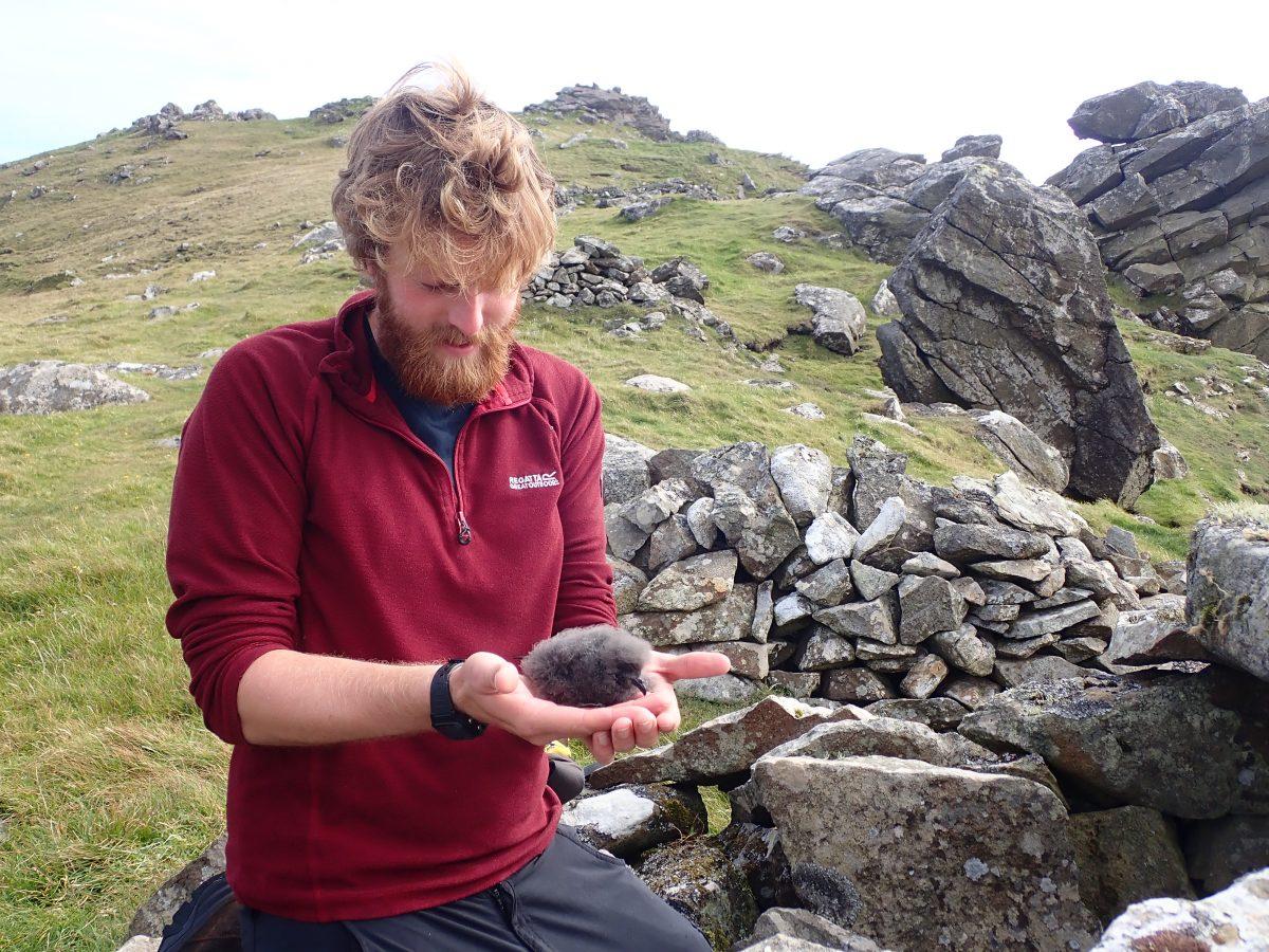 Scotislands Scottish Islands St Kilda ranger