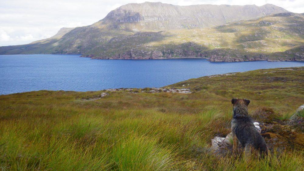 Scottish Islands Isle Martin