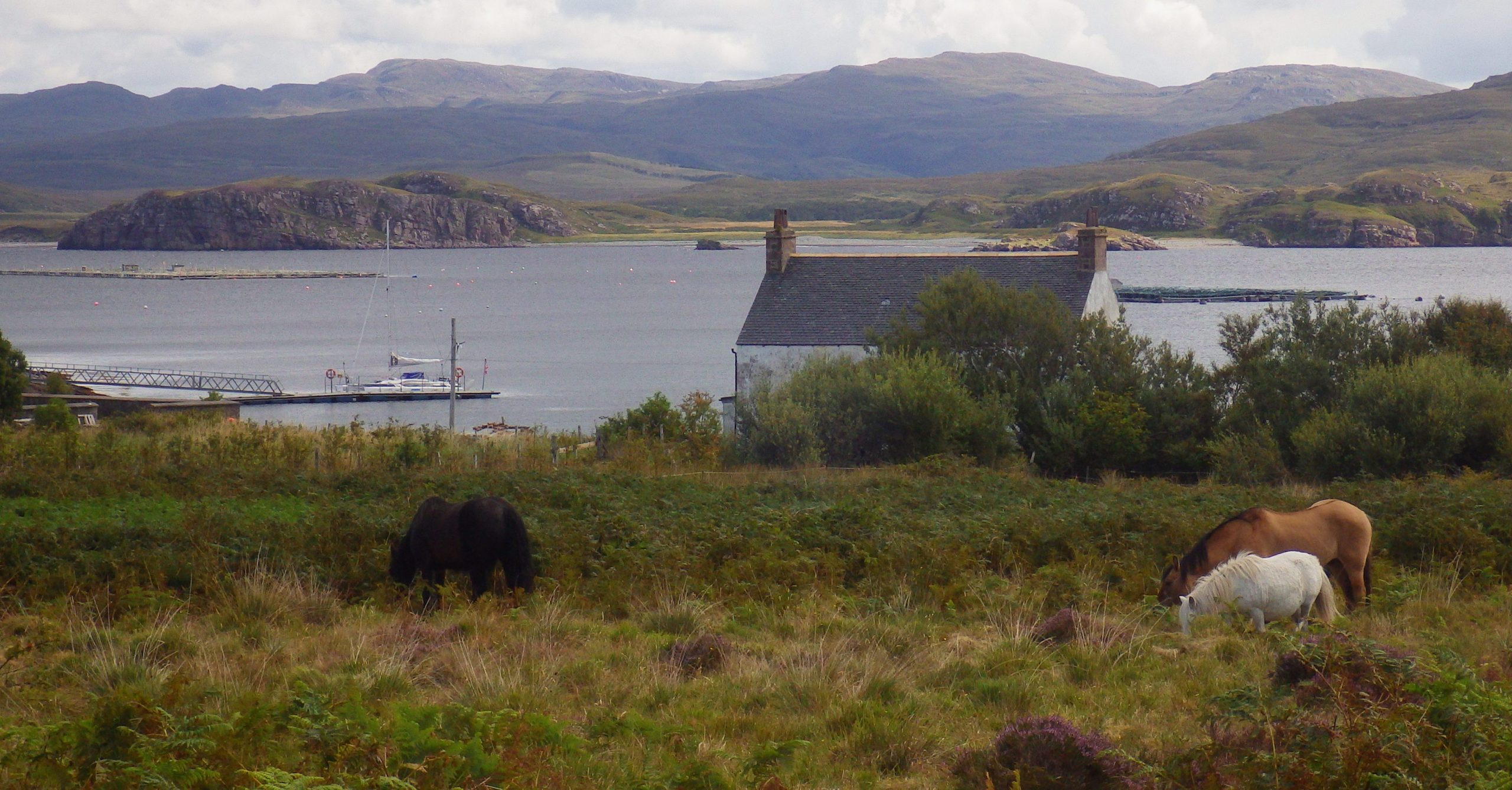 Isle Martin Scotislands