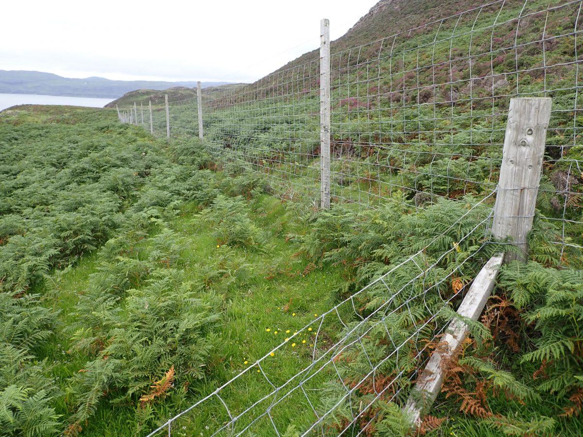 Gometra Deer fence