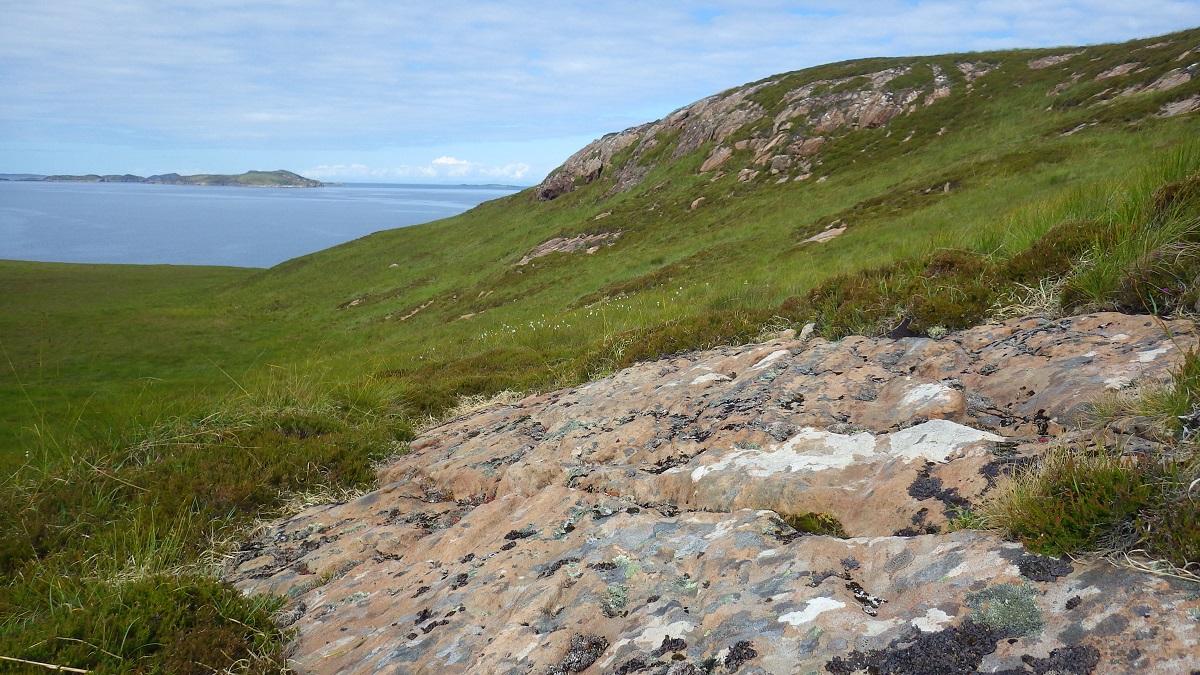 Scotislands Horse island summer isles