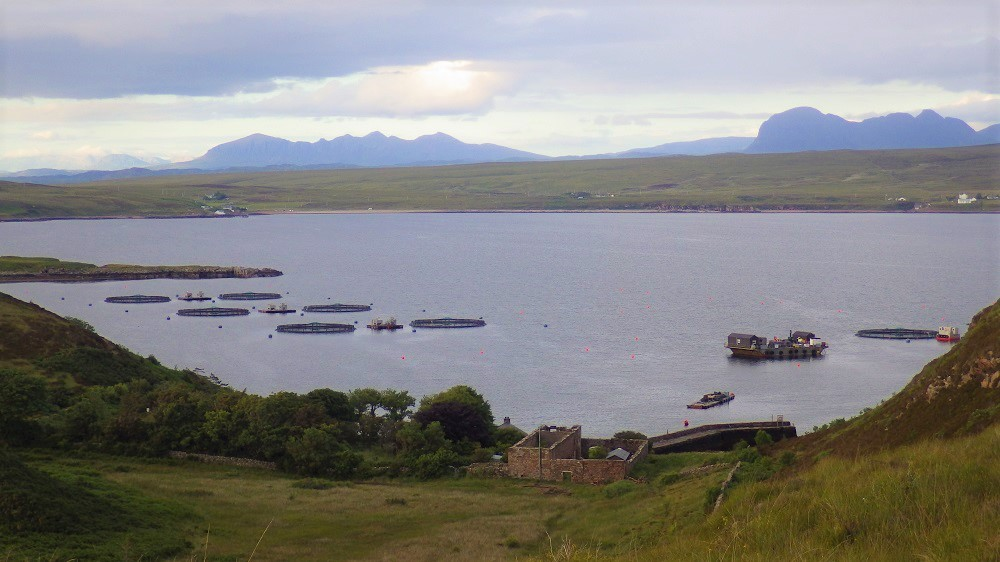 Fish farm cages in bay Tanera Mor