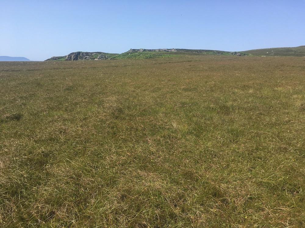 Longa island Loch Gairloch grass meadow