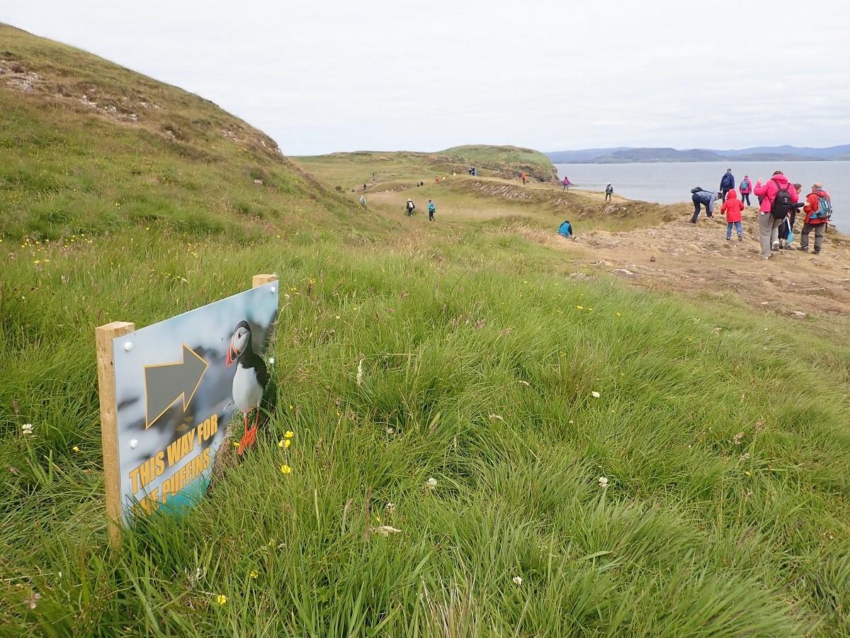 Puffins on Staffa sign