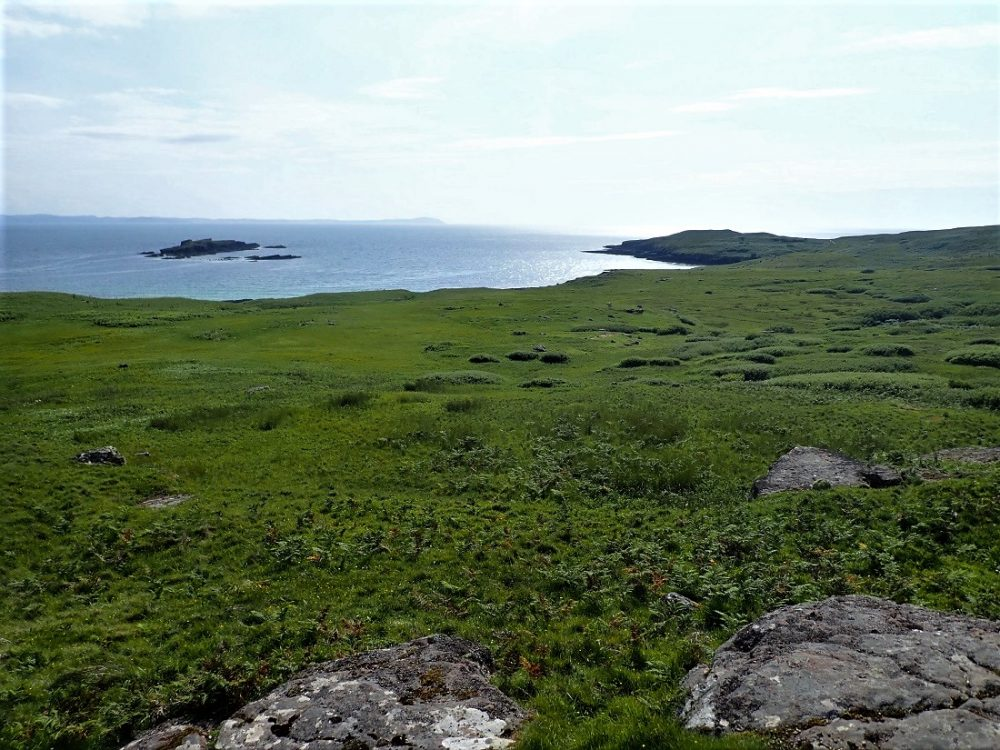 Handa Island looking out to sea
