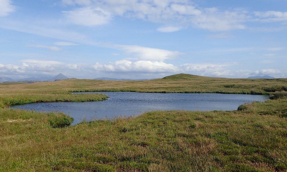 Freshwater loch on Handa island