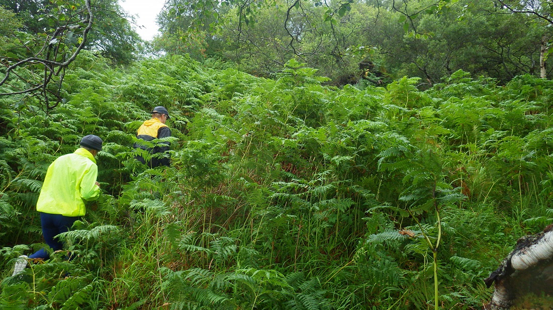 Scotislands Eilean Nan Eildean Sunart explorers